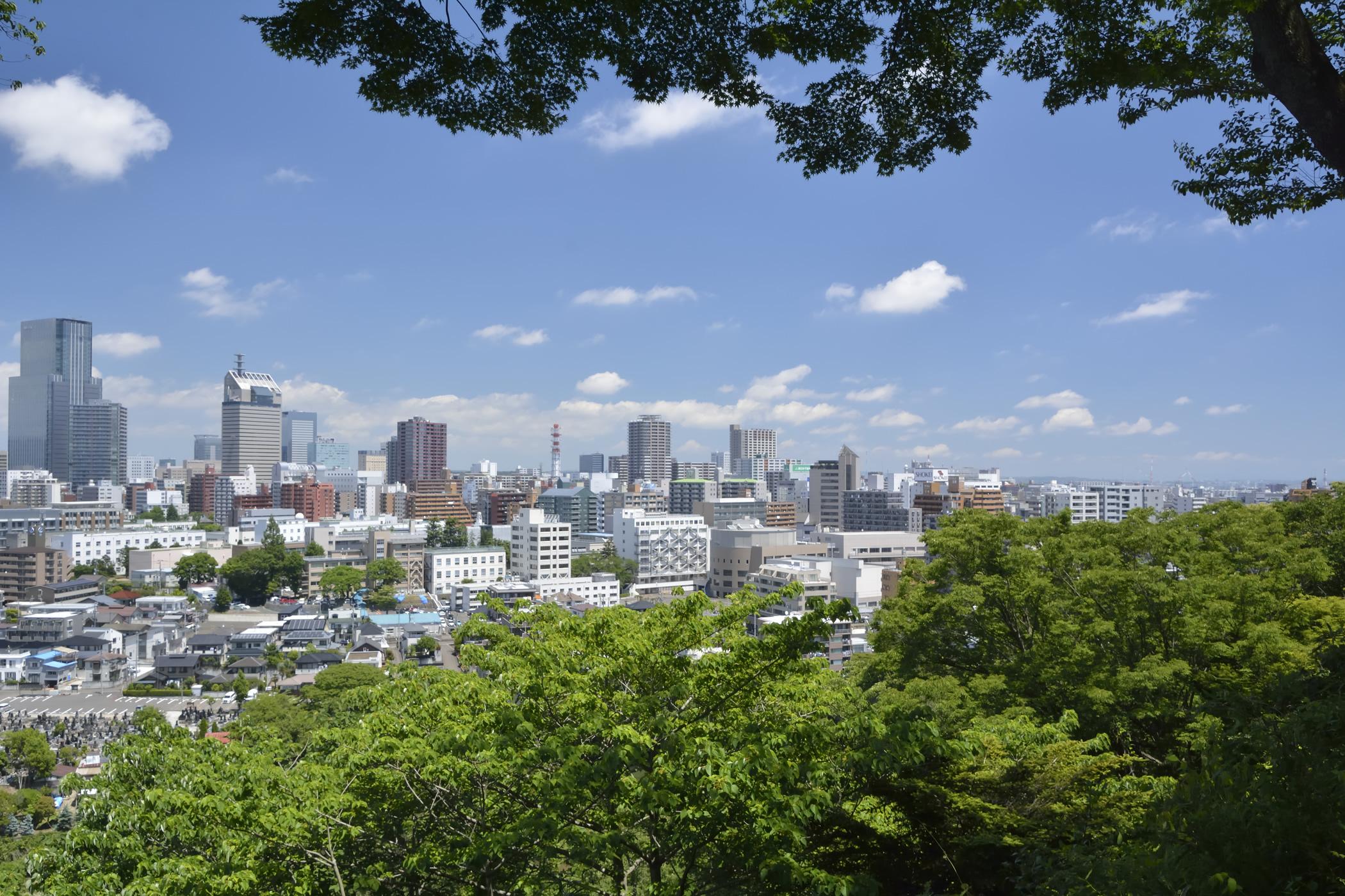 仙台を中心に宮城県の中小零細企業様に最適で低価格なホームページを製作いたします