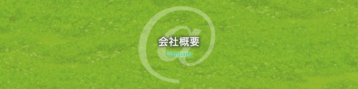仙台で格安で高品質なホームページを提供制作している会社です